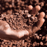 Glencore, Macarthur Minerals ink 10-year Lake Giles iron ore offtake