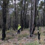 Western Australia releases standards for mine rehabilitation