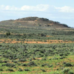 Broken Hill turns to United States following Thackaringa sale