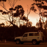 Western Areas suspends Forrestania operations after bush fire