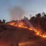 Western Areas overcomes bushfire threat with solid December quarter