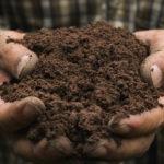 Soil sampling under way ahead of GTR's gold drilling