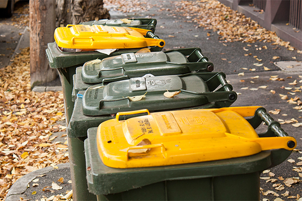 Does Victoria need four bins?