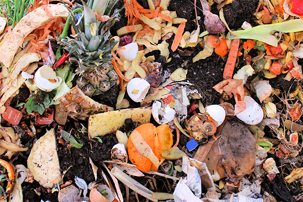 First organic waste project to power VIC