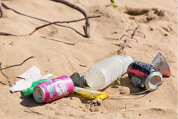 WWF proposes three Govt actions to halve plastic pollution